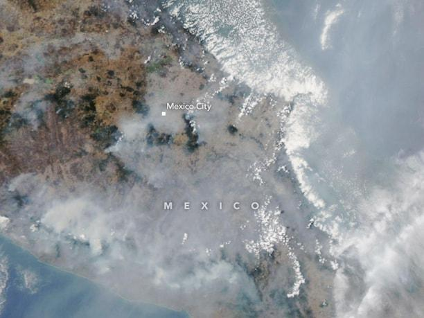 Mexico City's current air pollution levels cause government to declare an Environmental Emergency